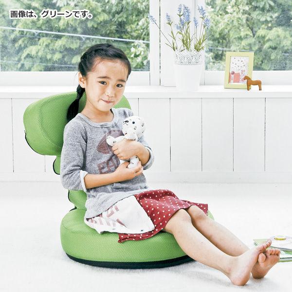 宮武製作所 欲張り多機能ゲーム座椅子 グリーン (直送品)