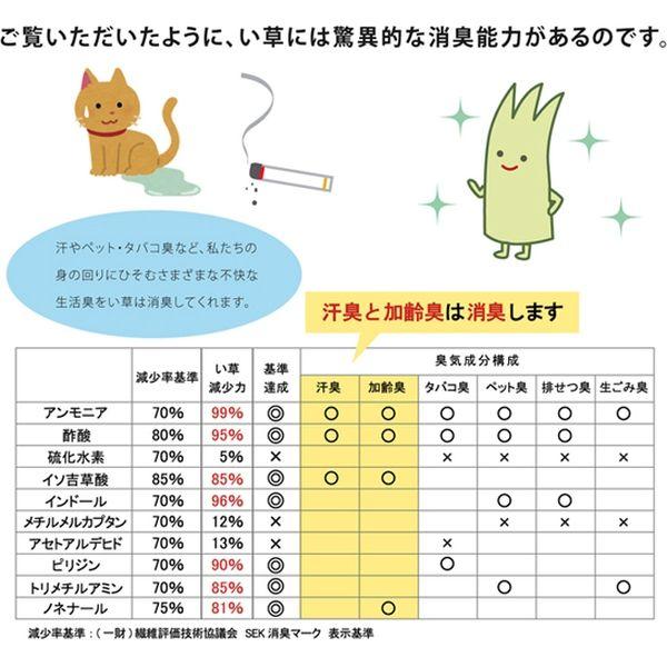 インソール メンズ 消臭 抗菌 『い草インソール』 ネイビー 約26cm(直送品)