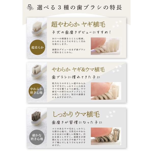 ミガケンデ 小型犬 柔らかいヤギ植毛