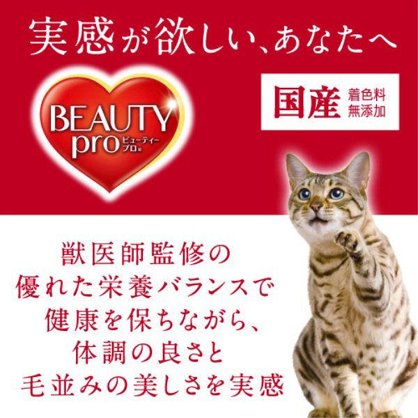 ビューティP 子猫用1.5kg