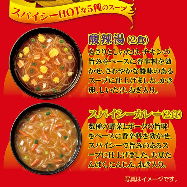選べるスープ春雨スパイシーHOT10食