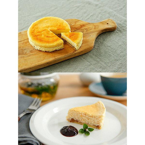 913チーズケーキ&マンゴーソース