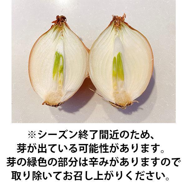 北海道産玉ねぎスマイルボールL約2kg