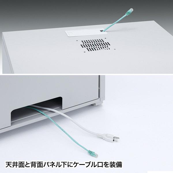 サンワサプライ 19インチマウントボックス(H1000・19U) W600×D900×H1000mm CP-203 1台 (直送品)