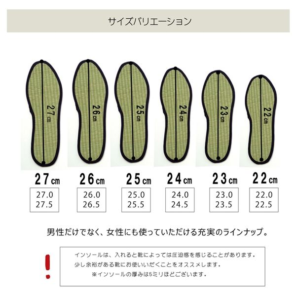 インソール レディース 消臭 抗菌 『い草インソール』 ネイビー 約22cm(直送品)
