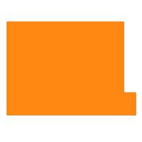 日本ホップス 仕切りガイド ラテラル A4 オレンジ DG-A4L05 1袋(10枚入) (直送品)