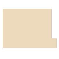 日本ホップス 仕切りガイド ラテラル A4 ベージュ DG-A4L09 1袋(10枚入) (直送品)