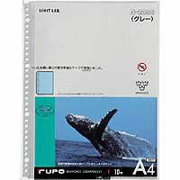 リヒトラブ クリヤーブック ルポ A4用リフィル N2006 1袋(10枚入) (直送品)