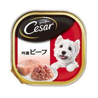Cesar(シーザー) ドッグフード 吟撰ビーフ 100g 1セット(24個) マースジャパン