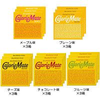 カロリーメイト ブロック アソートセット(15箱入) 大塚製薬 栄養補助食品