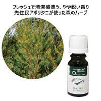 生活の木 エッセンシャルオイル ティートゥリー 1本(10mL)