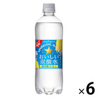 ポッカサッポロフード&ビバレッジ おいしい炭酸水レモン 500ml 1セット(6本)