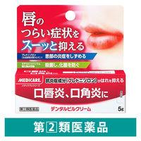 【指定第2類医薬品】デンタルピルクリーム 5g 森下仁丹