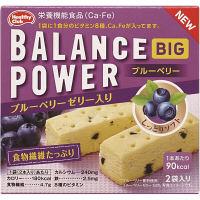 バランスパワー ビッグ ブルーベリー