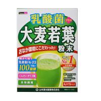乳酸菌大麦若葉 4gX15袋入 山本漢方製薬  青汁