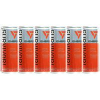 【エナジードリンク】サバイバーエナジードリンク 250ml 1セット(6缶)