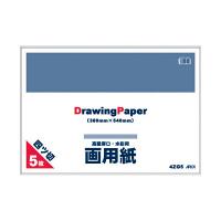 アピカ 4つ切画用紙 5枚 4ZG5 (取寄品)