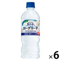 サントリー ヨーグリーナ&サントリー天然水(冷凍兼用ボトル)540ml 1セット(6本)