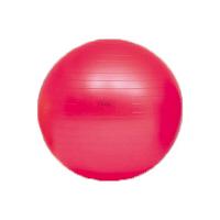 トーエイライト ボディーボール55(最大時直径55cm) H7261 1個 (取寄品)
