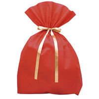 【クリスマス】ソフトバッグ 巾着袋 超BIG 赤 1枚