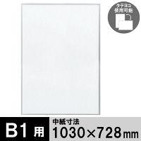 プラチナ万年筆 アケパネライト(低反射)シルバー B1 1枚