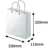アスクル 「現場のチカラ」 樹脂カバー付き 手提げ紙袋 S 1セット(90枚:10枚入×9袋)