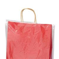 レイニーポリ L 1袋(50枚入) タカ印 (取寄品)