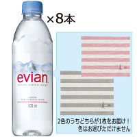 伊藤園 evian(エビアン) 500ml 1セット(8本)+エビアン ピクニックラグ 1枚