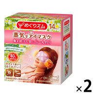 めぐりズム蒸気でホットアイマスク カモミールジンジャーの香り1セット(14枚入×2箱) 花王