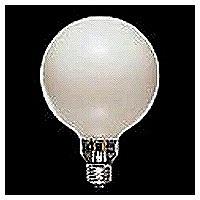 東芝ライテック チョークレス水銀ランプ 100W形 E26 BHGF100-110V100W/T (取寄品)