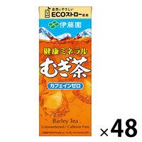伊藤園 健康ミネラルむぎ茶(紙パック) 250ml 1セット(48本:24本入×2箱)