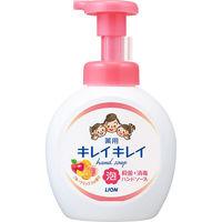 【500ml大型ボトル】キレイキレイ 薬用泡ハンドソープ フルーツミックスの香り 本体500ml 【泡タイプ】 ライオン