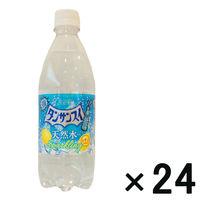 チェリオ タンサンスイレモン 1箱(24本)