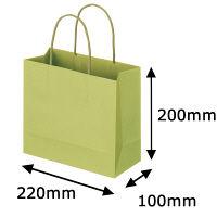 丸紐 手提げ紙袋 グリーン M 10枚
