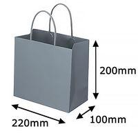 レザートーン手提袋 丸紐 クールグレー M 1袋(10枚入) スーパーバッグ