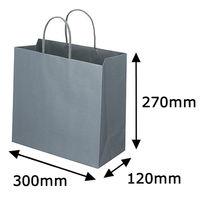 レザートーン手提袋 丸紐 クールグレー L 1袋(10枚入) スーパーバッグ