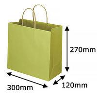 レザートーン手提袋 丸紐 グラスグリーン L 1セット(50枚:10枚入×5袋) スーパーバッグ