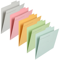 プラス 個別フォルダーA4 アソートパック 5色×2 87120 1袋(10枚入)