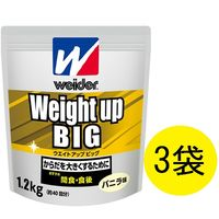 ウイダー ウエイトアップビッグ バニラ味 1.2kg 1セット(3袋) 森永製菓 プロテイン
