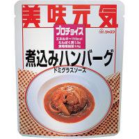 キユーピー ジャネフ プロチョイス 煮込みハンバーグ ドミグラスソース 1箱(24袋入) 11525 (取寄品)