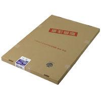 アスクル】リコー リコピージアゾ感光紙 N-SDF 薄口A1 900621 通販 ...