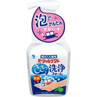 パーシャルデント 洗浄フォーム