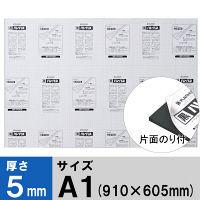 プラチナ万年筆 黒ハレパネ(R) 厚さ5mm A1(910×605mm) AA1-5-1650B 10枚入