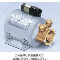 岩谷電機製作所 カスケードポンプ 05RXAB-020B 1台 1-1124-13 (直送品)