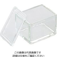 アズワン 染色バット(ガラス) 20枚用 10130520 1個 1-4863-01 (直送品)