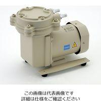 アルバック機工 ドライ真空ポンプ(加圧減圧両用ダイアフラム型) 33.3kPa DAP-30 1台 1-671-21 (直送品)