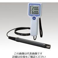 佐藤計量器製作所 温湿度計SK-110TRHII TYPE1 SK-110TRH2TYPE1 1台 1-9901-01 (直送品)