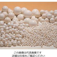 ニッカトー アルミナボール SSA-999W-25 1箱 5-4058-05 (直送品)