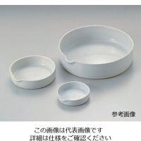 アズワン 磁製平皿 φ150mm 400mL 1枚 6-563-06 (直送品)