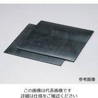 アズワン フッ素ゴム板 500mm×500mm×0.5t 1枚 6-856-01 (直送品)